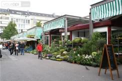 carlsplatz-in-carlstadt-wijken-in-duesseldo(p-location,662)(c-0).jpg
